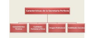 secretaria perfecta